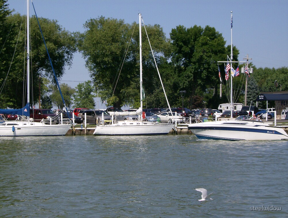 Sailboats in Port Clinton by steelwidow