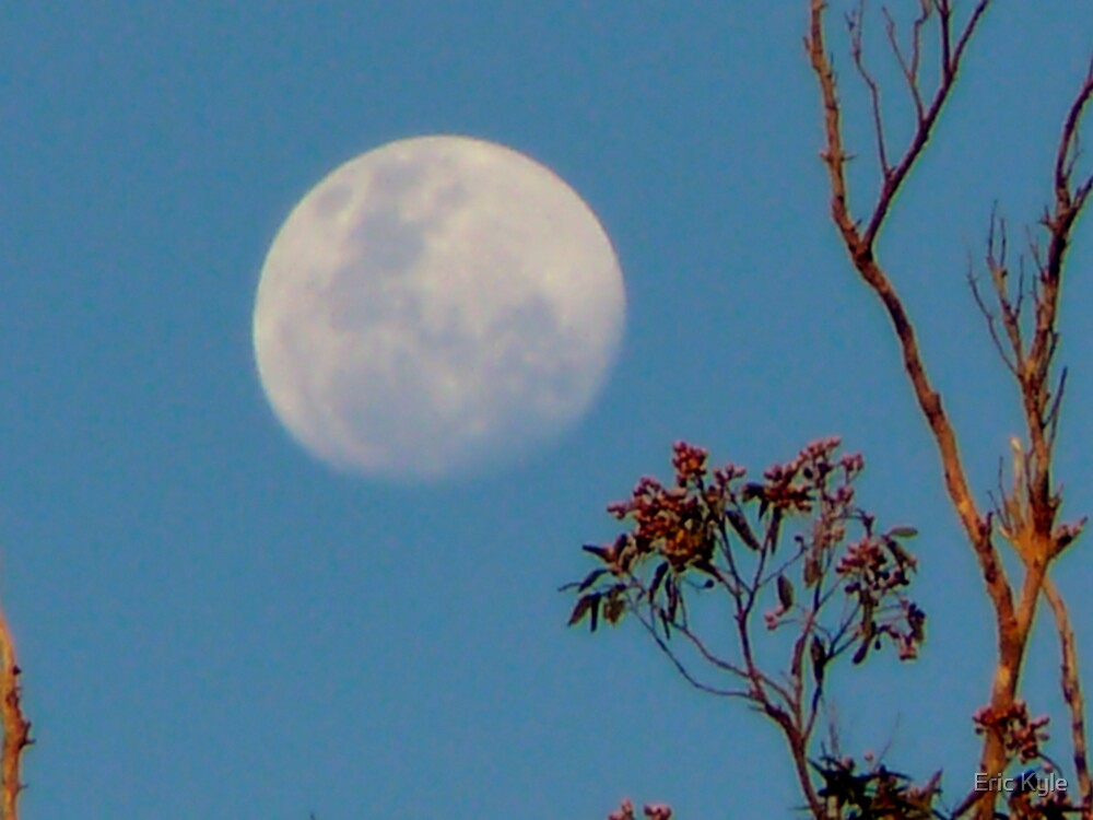 EVENING MOON IN JULY by Eric Kyle