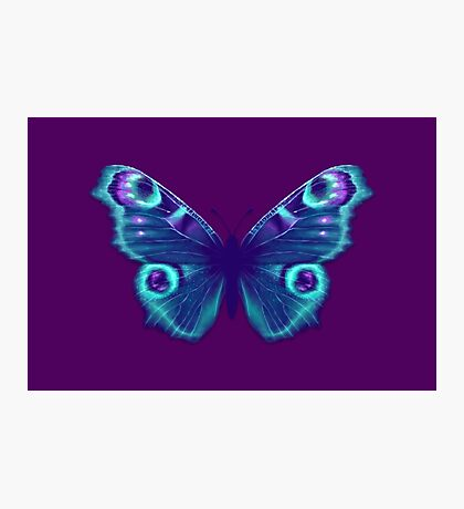 Purple and Teal Butterfly Photographic Print