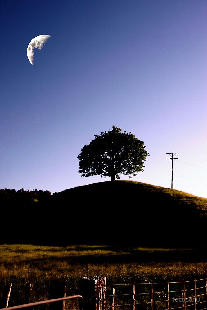 The moon and a tree by focusonu