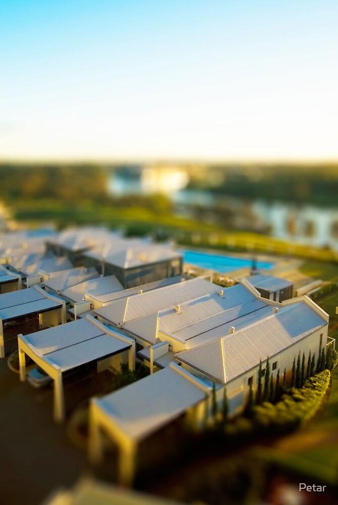 ascot miniature by Petar