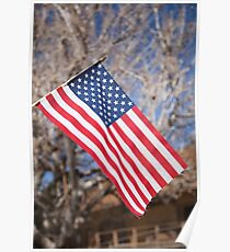 The American Flag Poster