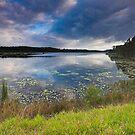 Stormy Dawn - Ewen Maddock Dam by AdamDonnelly