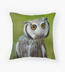 Northern white-faced owl - Ptilopsis leucotis Throw Pillow