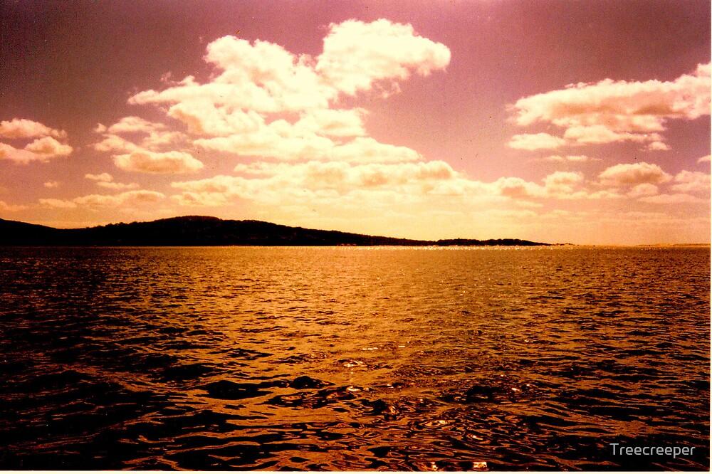 Ocean View by Treecreeper