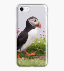 Out for a stroll iPhone Case/Skin