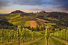 The hills of Ratsch by Delfino