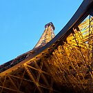 La Ville-Lumière by John Harrison