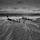 Full Moon Dicky Beach by AdamDonnelly