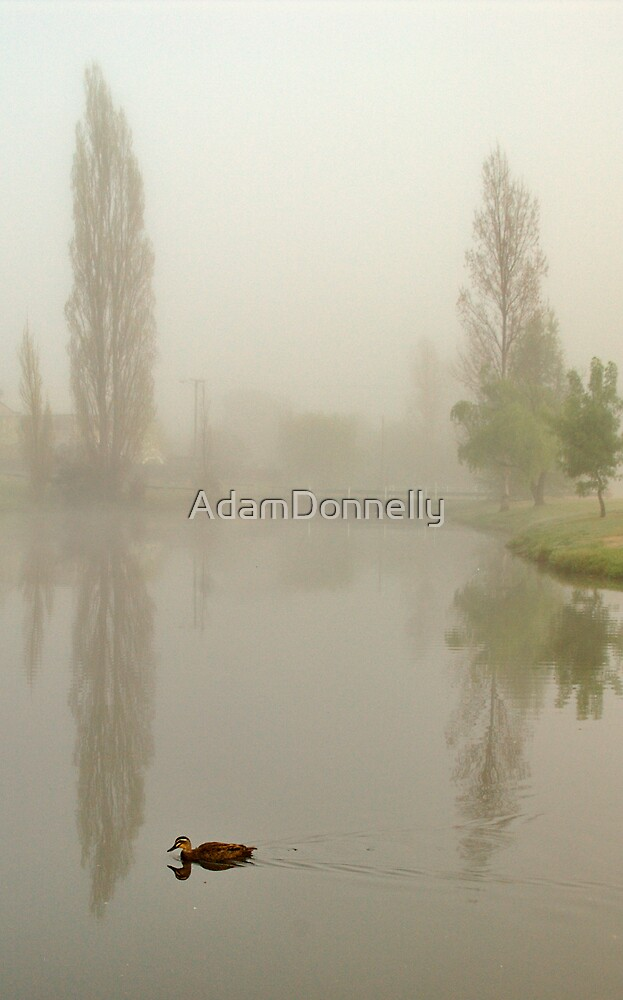 Stanthorpe by AdamDonnelly