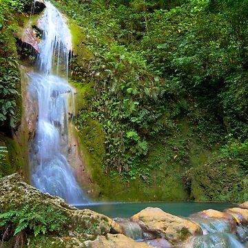 Cascades Waterfall. Vanuatu. by SteveKilburn