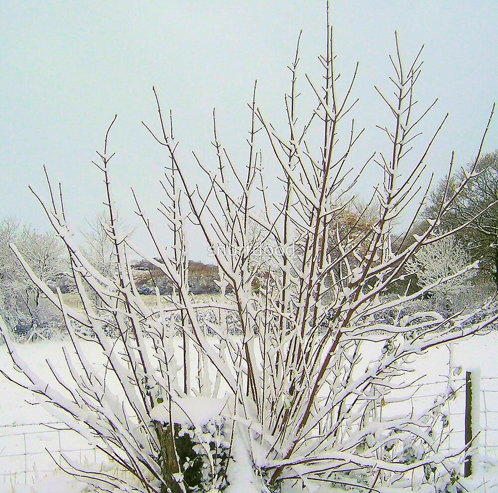Snow Tree by snurfdood