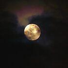 Smokey Moon by Laura Puglia