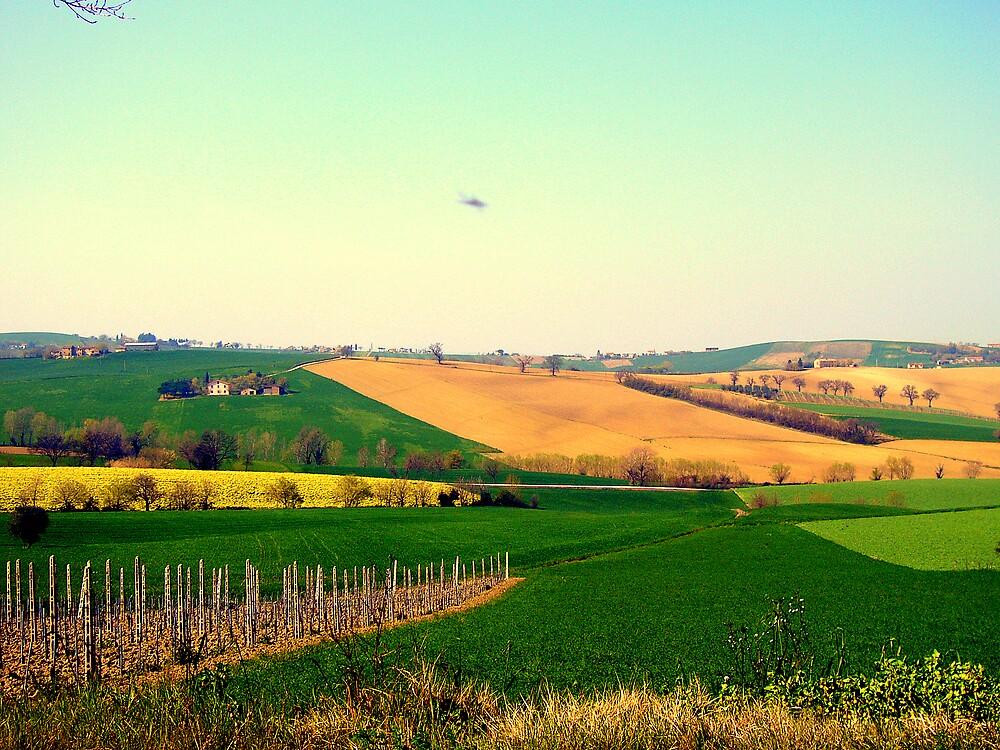 Simply......tuscany by honey