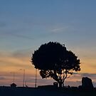 Lone Tree near the ruins of St Edmund's Chapel by Billlee