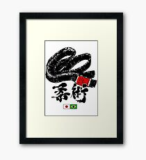 Brazilian Jiu Jitsu Framed Print