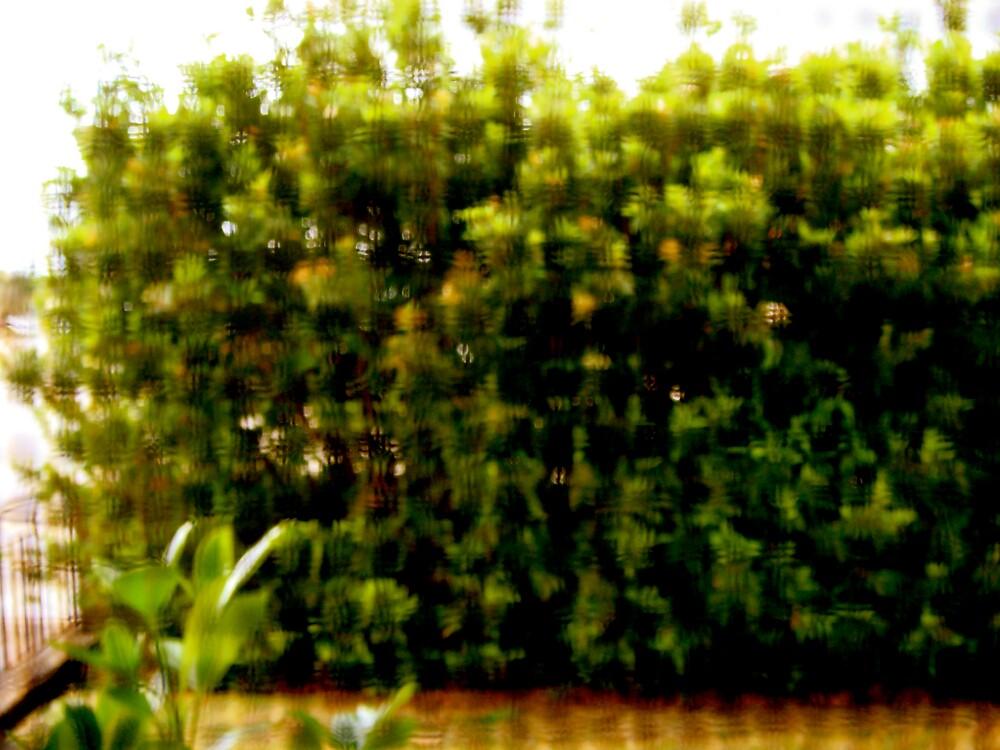 Holey Hedge by diongillard