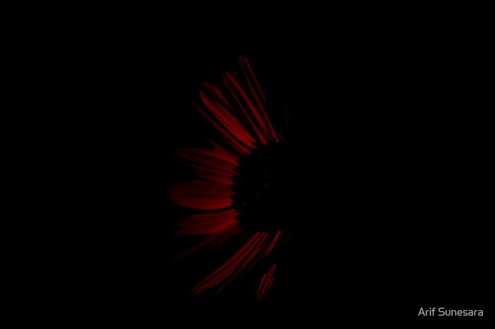 BLACK NIGHT by Arif Sunesara