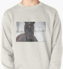 Horse in Snowstorm Pullover