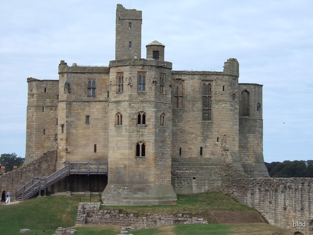 Warkworth Castle, Northumberland by blod