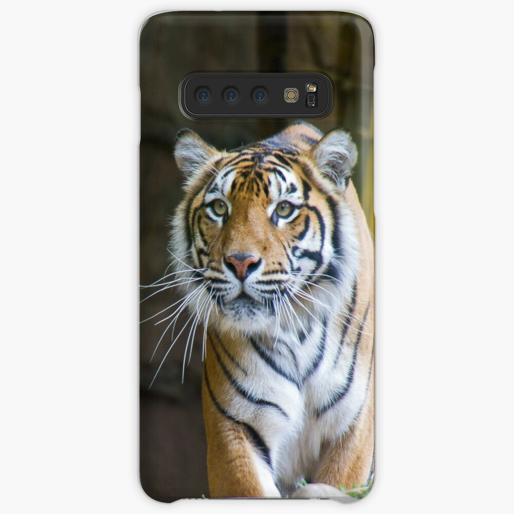 Tiger Case & Skin for Samsung Galaxy