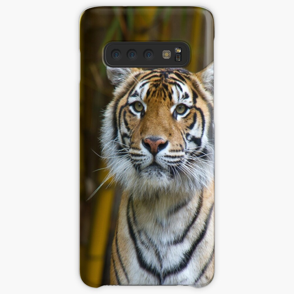 Tiger Cases & Skins for Samsung Galaxy
