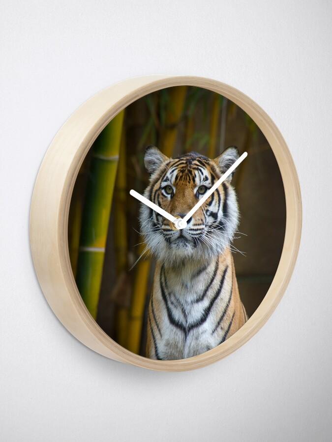 Alternate view of Tiger Clock