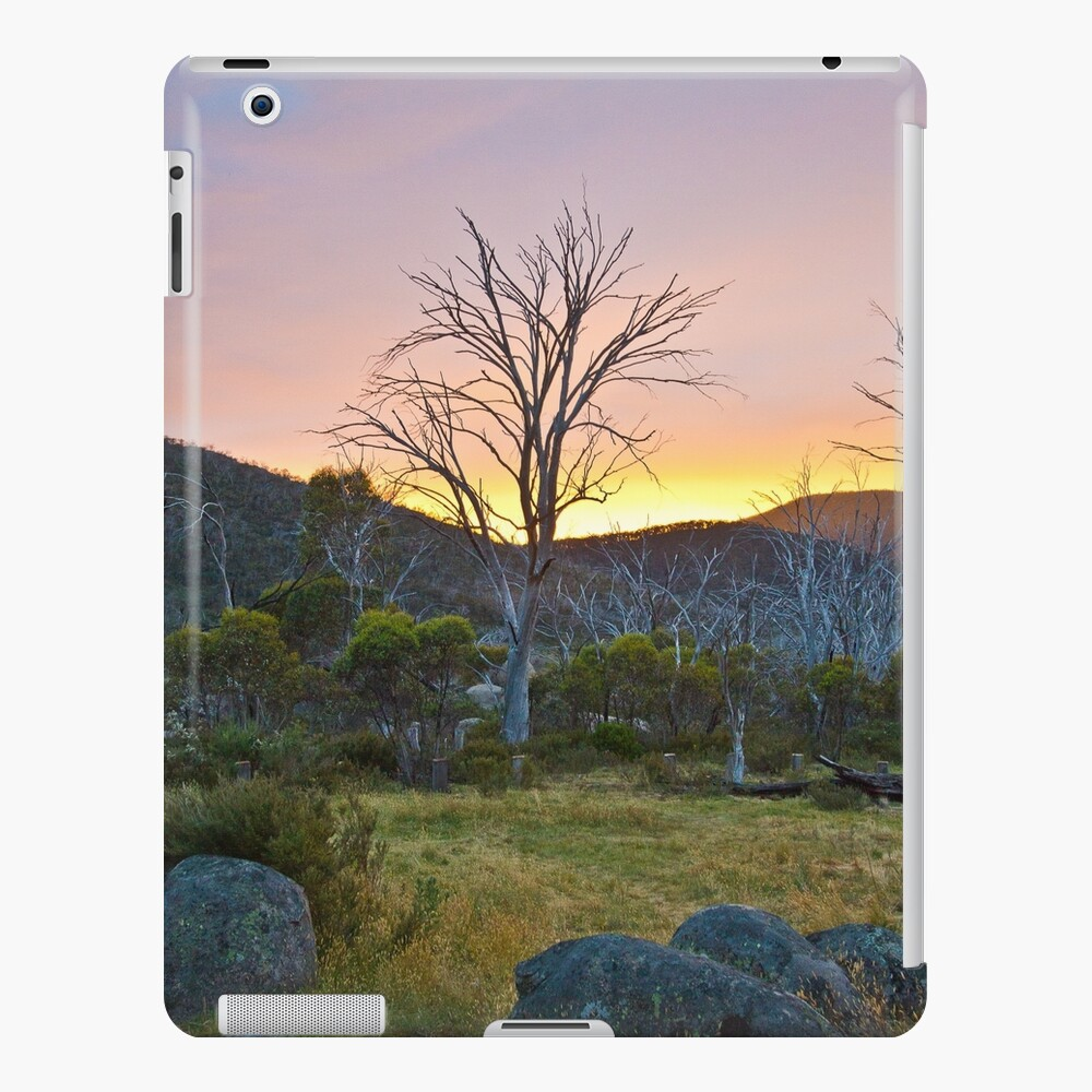 Morning iPad Case & Skin