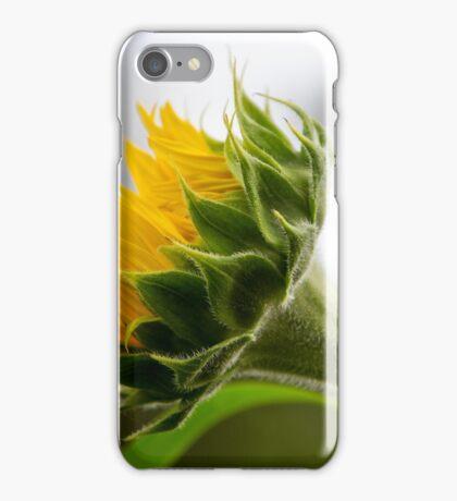 Seeking The Sun iPhone Case/Skin