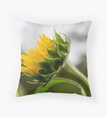Seeking The Sun Throw Pillow