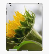 Seeking The Sun iPad Case/Skin