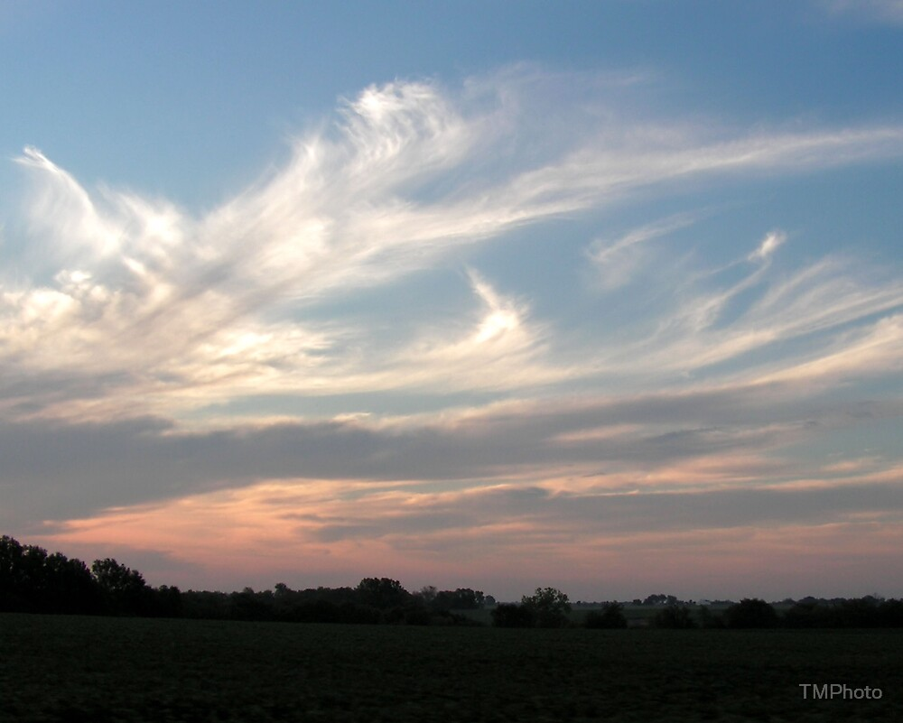 Feathered Clouds by TMPhoto