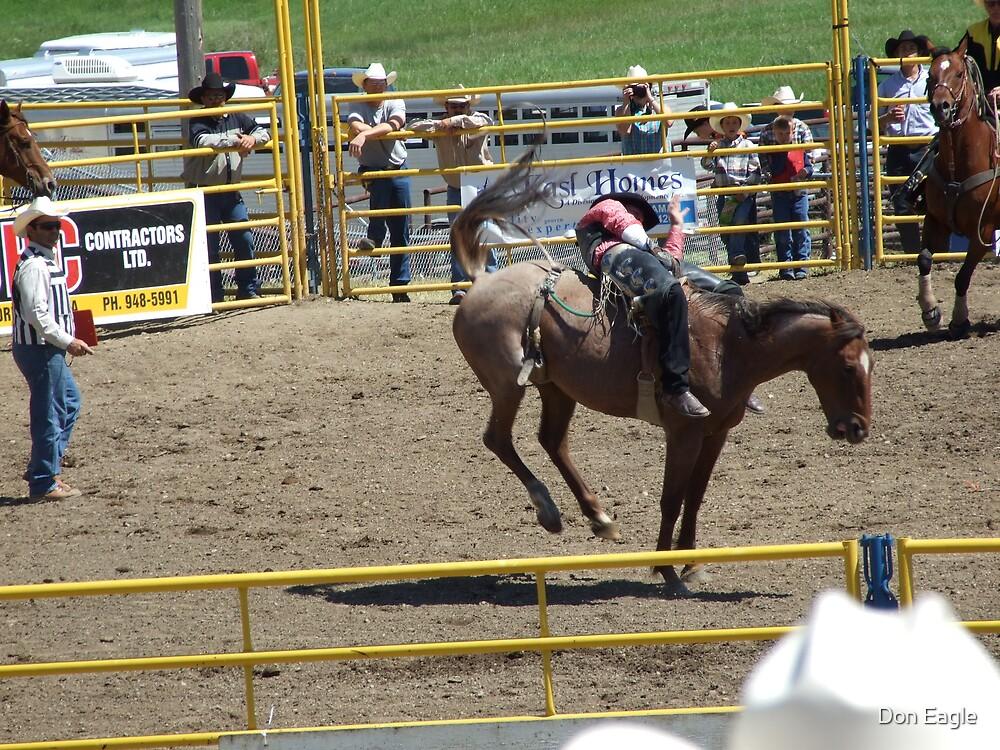 Ride Em' Cowboy by Don Eagle