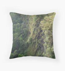 Mapleton Falls National Park Throw Pillow