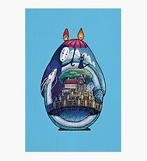 Miyazaki Totoro  Photographic Print