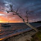 Sunset on the Isle by David Sundstrom