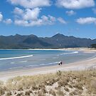 Whangapoua Beach........Great Barrier Island.....!! by Roy  Massicks