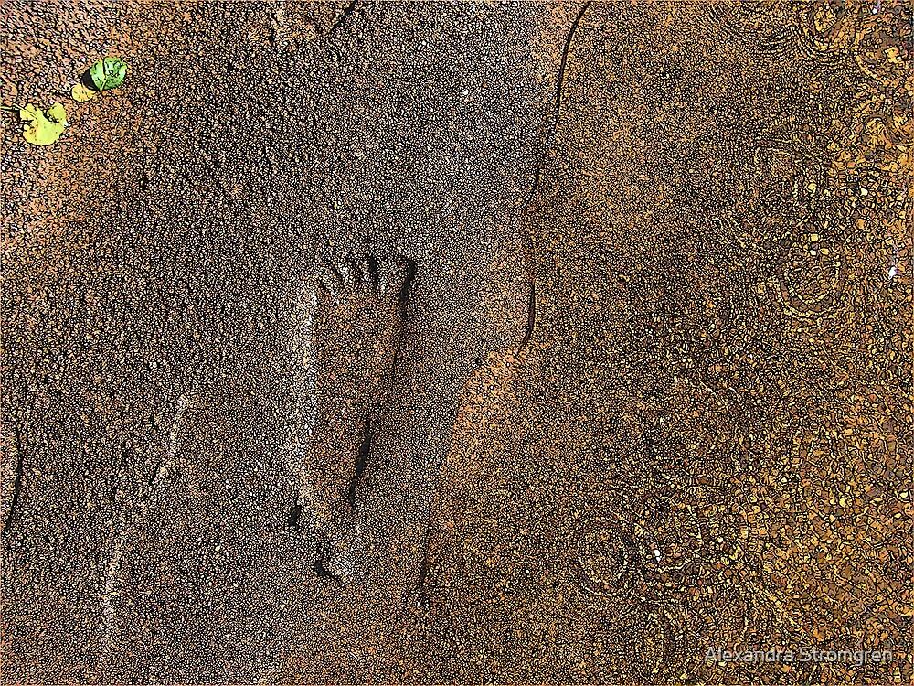 Sandprint by Alexandra Strömgren