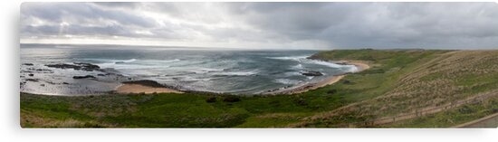 Southern Ocean by Ian Fraser
