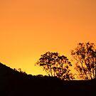 Orange sky at sunset by TheaShutterbug