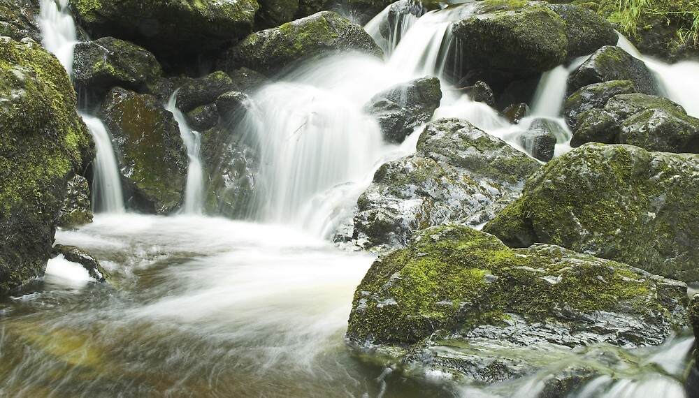 Babbling Brook by Glenn Mason