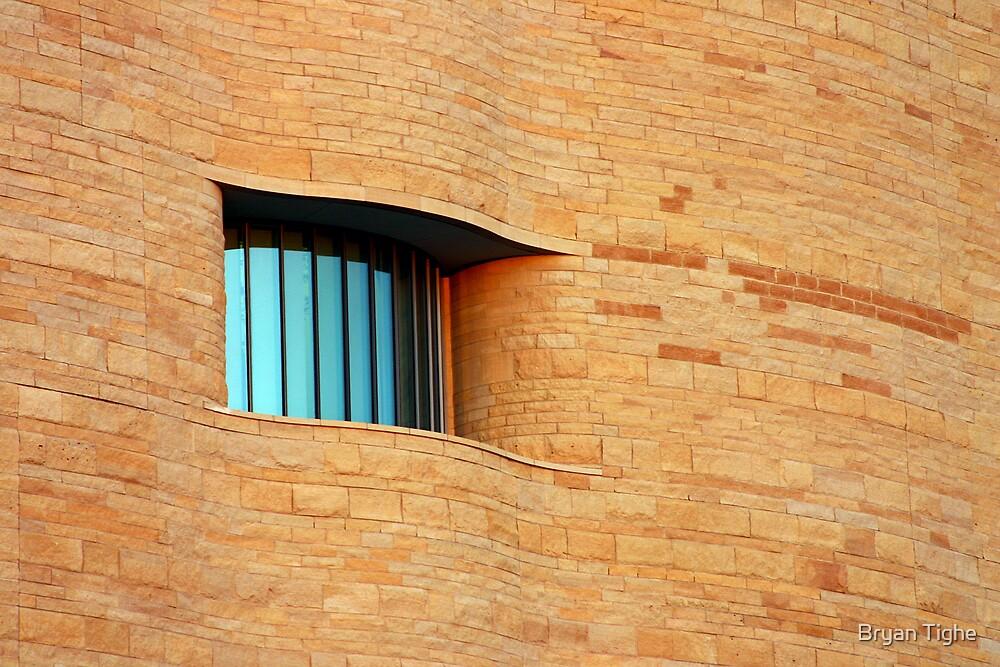 Window by Bryan Tighe