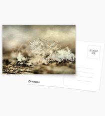 Snowflakes Postcards