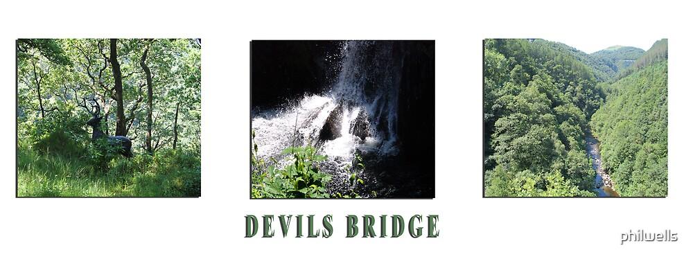 DEVILS BRIDGE by philwells
