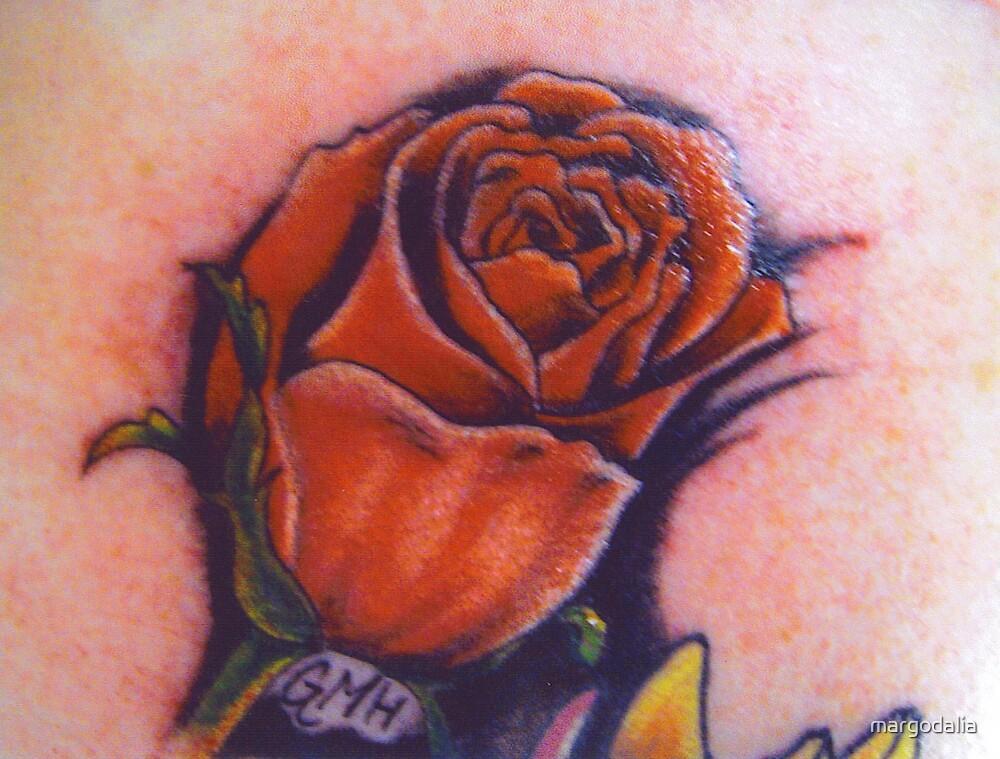 red rose by margodalia
