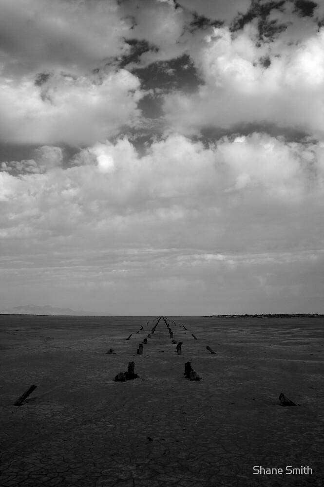 Pier Line 2 by Shane Smith
