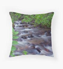 Fern Creek, Glacier NP Throw Pillow