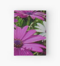Purple And Pink Tropical Daisy Flower Hardcover Journal