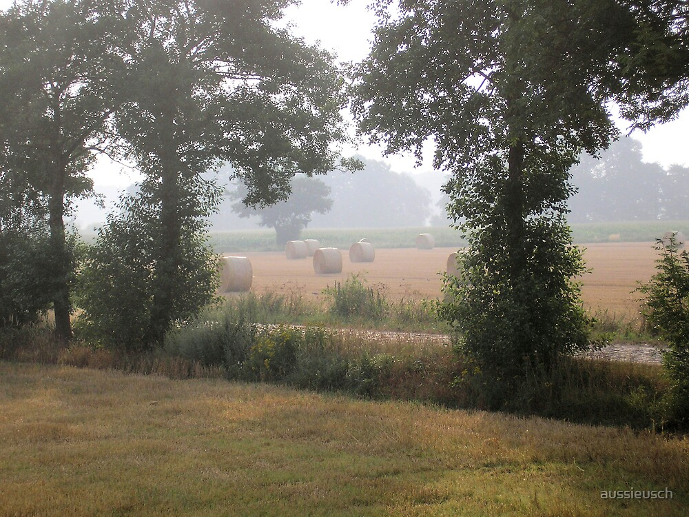 Fields of summer by aussieusch