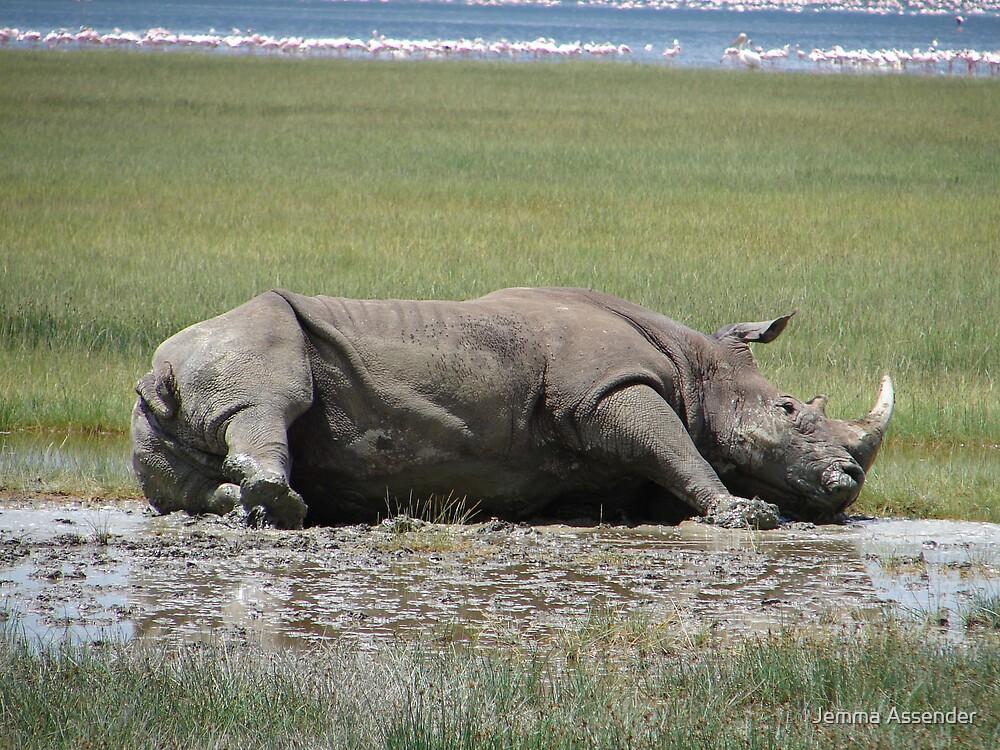 White Rhino Lying Down by Jemma Assender